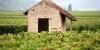 Frankrijk populairste vakantie wijn land